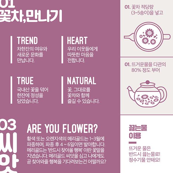 브로셔 / 리플렛 | 꽃이다 | 라우드소싱 포트폴리오