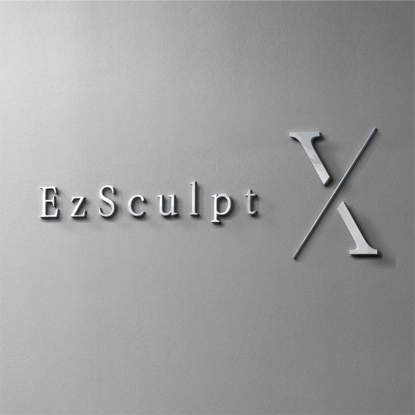 로고 디자인 | 이지스컬프(EzSculp... | 라우드소싱 포트폴리오
