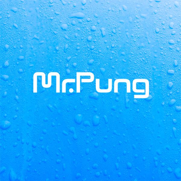 로고 디자인 | Mr.Pung 로고 디자... | 라우드소싱 포트폴리오