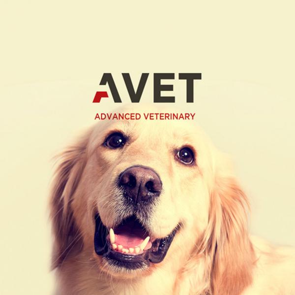 로고 + 간판 | AVET동물의료센터  | 라우드소싱 포트폴리오