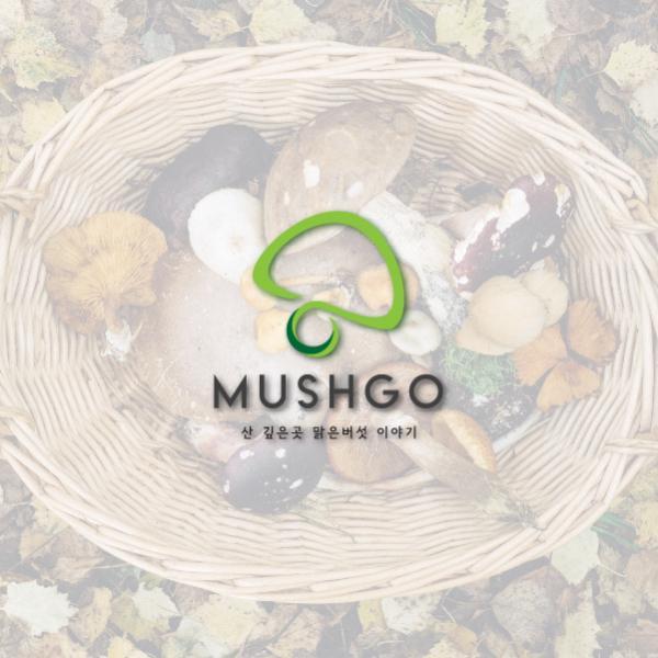 로고 디자인   머시고 (MUSHGO)   라우드소싱 포트폴리오