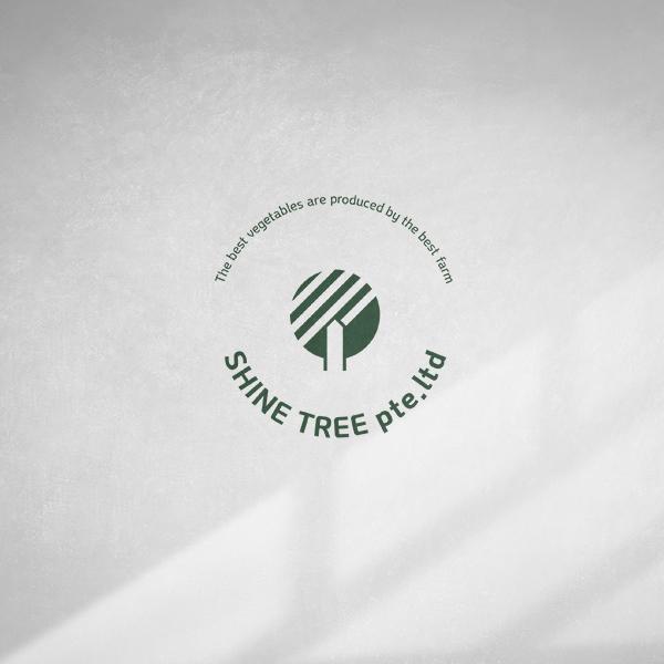 브랜딩 SET   SHINE TREE pte.ltd   라우드소싱 포트폴리오