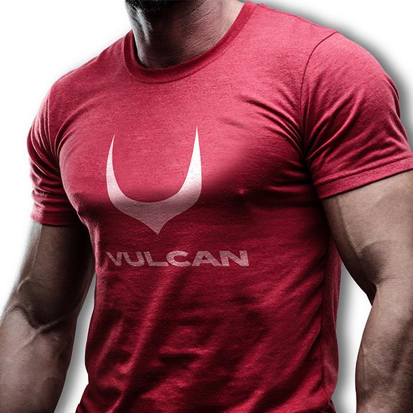 로고 디자인 | VULCAN  | 라우드소싱 포트폴리오