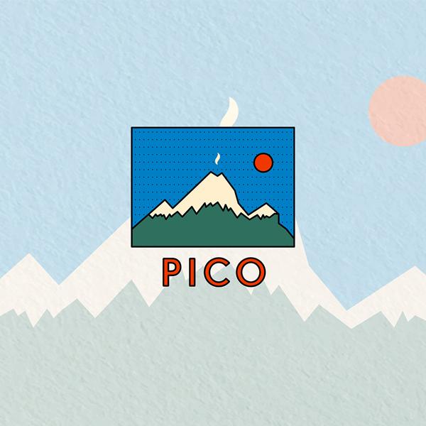 로고 디자인 | 피코 | 라우드소싱 포트폴리오