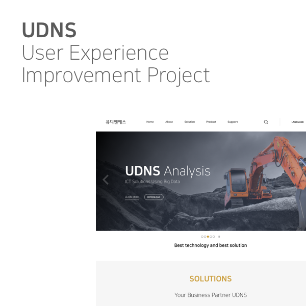 UDNS User Experience Improvement Project