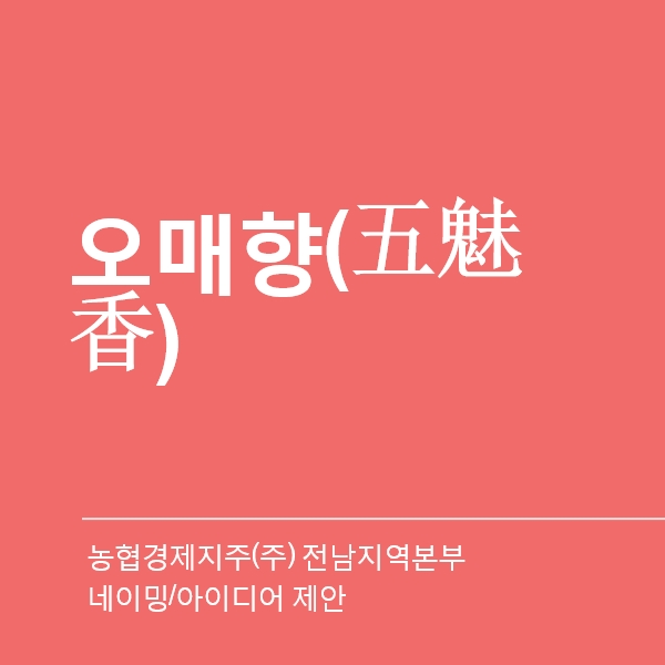 네이밍 / 아이디어   전남 아열대과일 브랜드개...   라우드소싱 포트폴리오