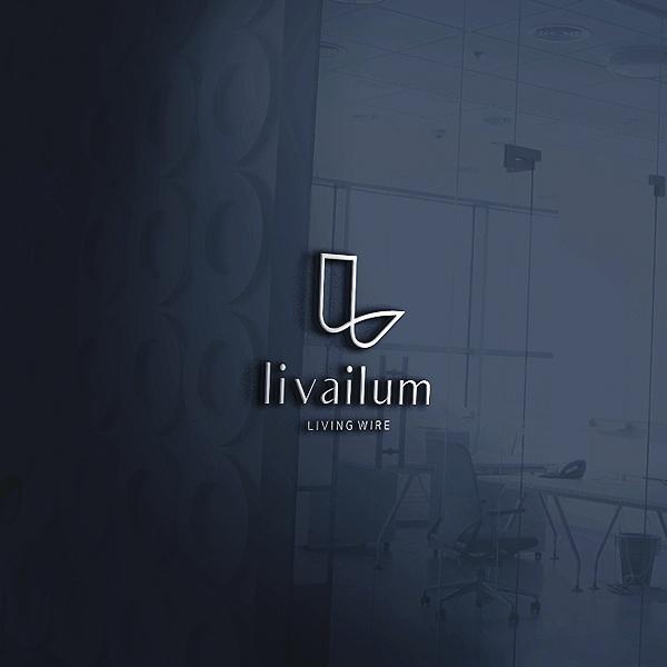 로고 디자인 | 나승하이텍(주) | 라우드소싱 포트폴리오