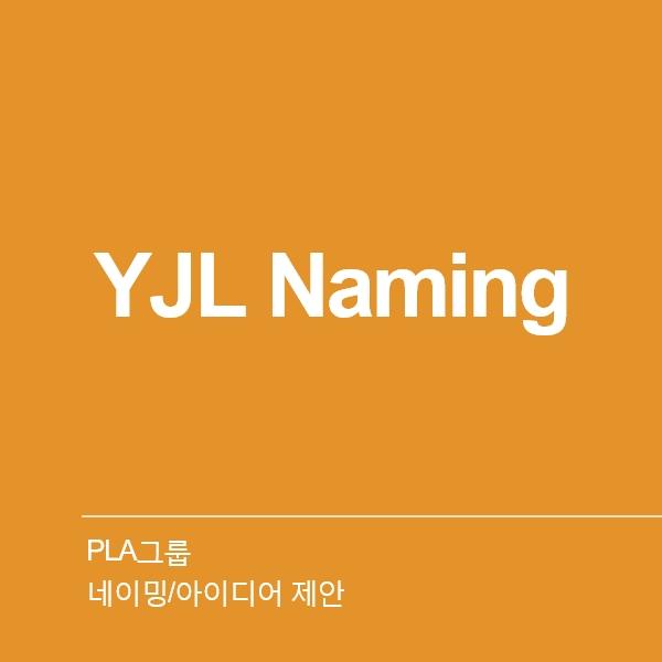 네이밍 / 아이디어   PLA그룹_와이제이엘 2...   라우드소싱 포트폴리오
