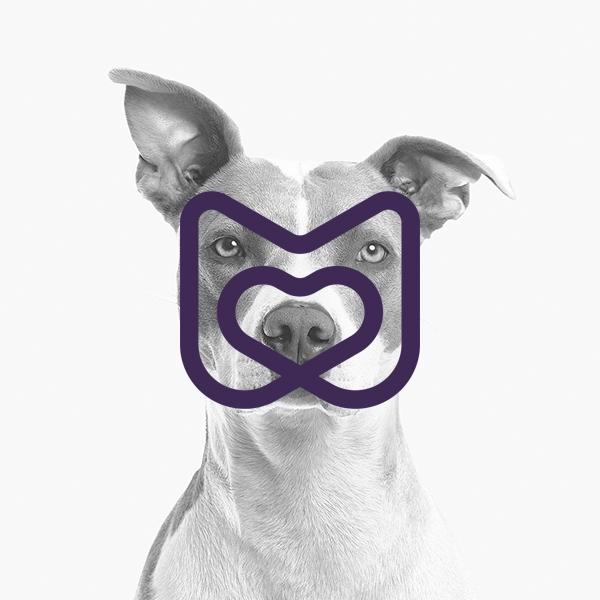 로고 디자인 | 반려동물 브랜드